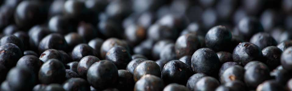 ACAI BERRIES FOR SKIN