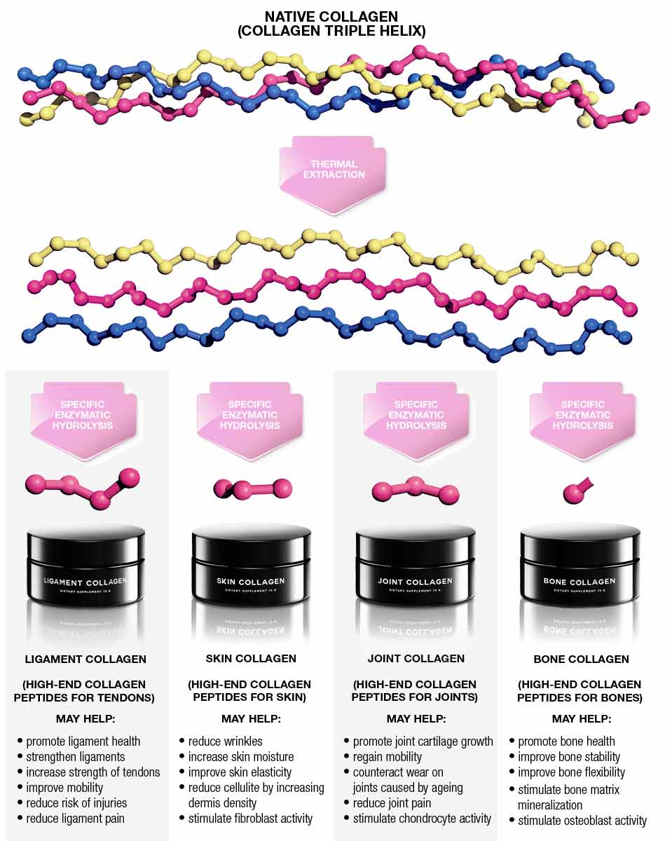 COLLAGEN PEPTIDES, MANUFACTURING CHART